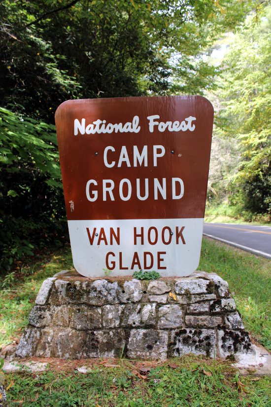 National Forest Van Hook Glade