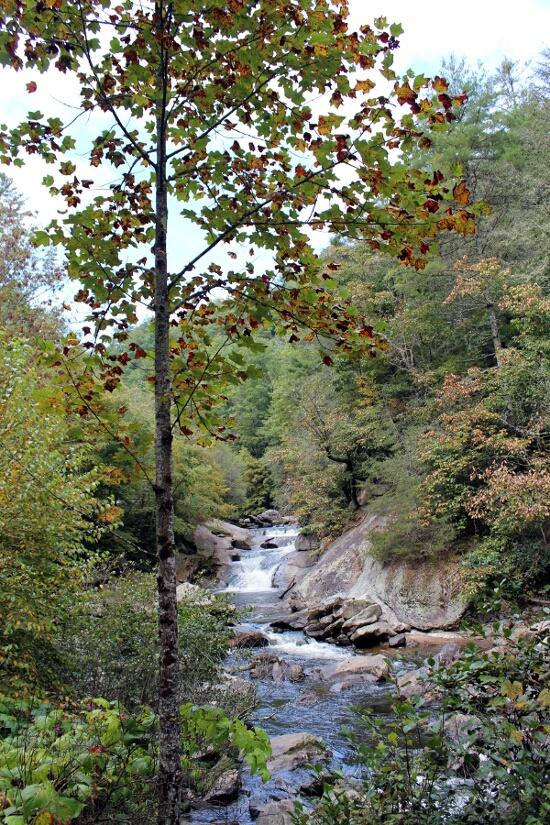 Fall and Falls