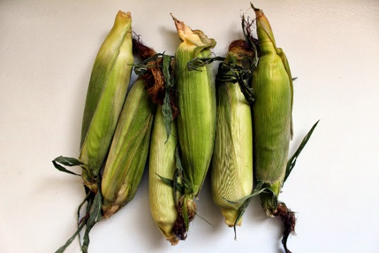 Corn Cobs with Husk