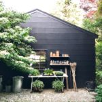 The Backyard Shed: Inspiration